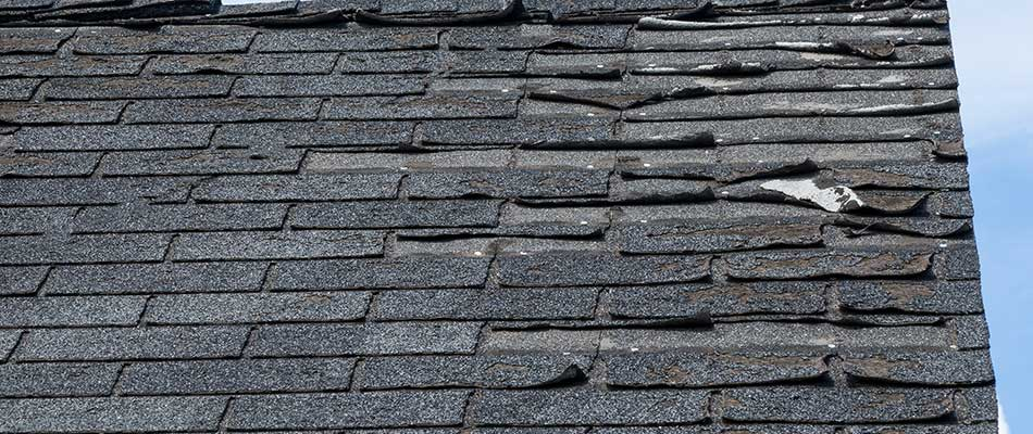 Damaged shingles on a home's roof in Wesley Chapel, FL.