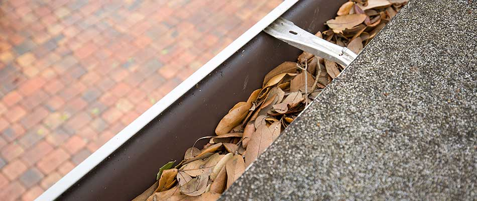 A home gutter clogged with leaves in Plant City, FL.
